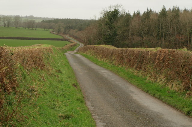 Lane on Scobchester Down