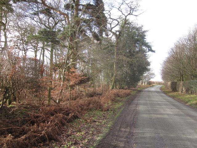 Congleton Lane Lower Withington