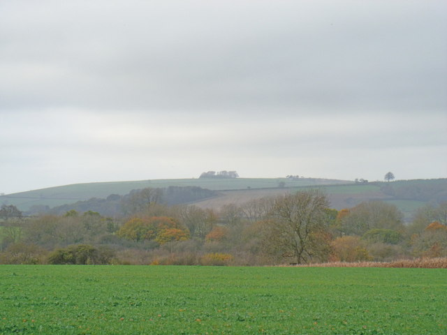 Highwall Spinney from near Fodge Farm