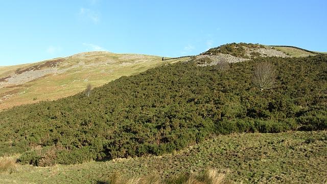 Cribbielaw Hill