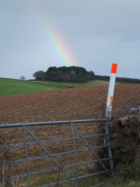 Rainbow over Ringsdon Clump