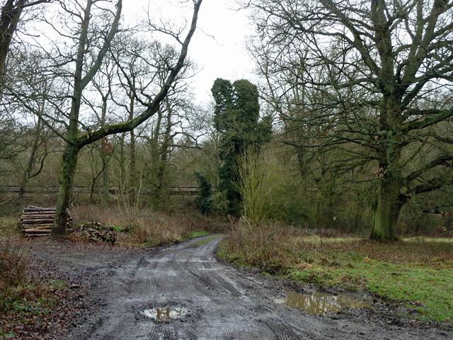 Farm track by railway