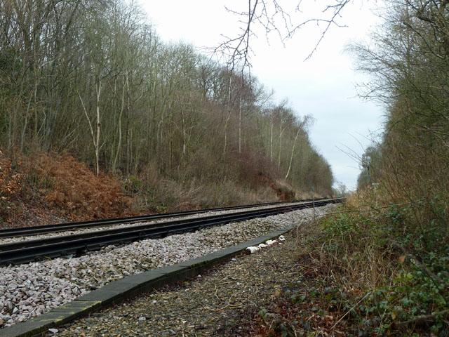 Railway by Gason Wood