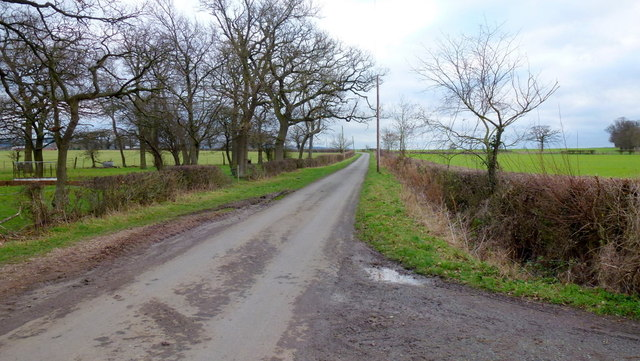 Gotherington Fields Lane