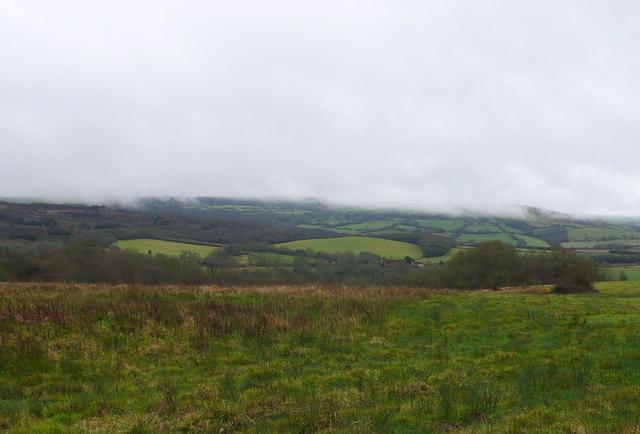 Rough pasture near North Poorton
