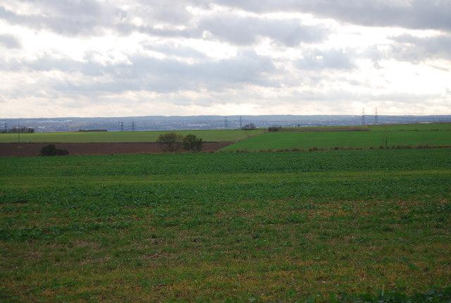 Farmland, Hoo Peninsula