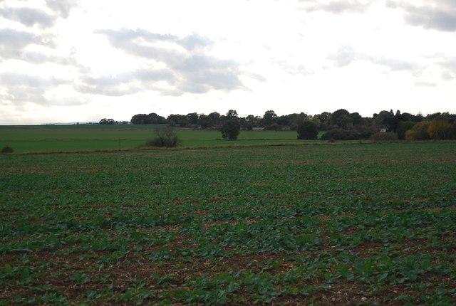 Farmland, New Barn Farm