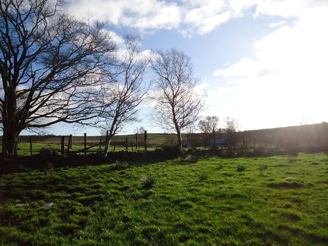 Castlecary Muir, Rashbush (ruin)