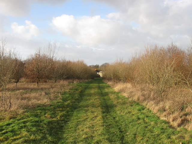 Track to Burchetts Farm