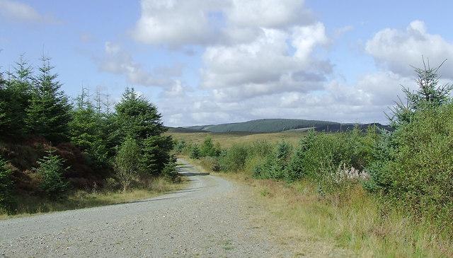 Forestry road to Soar-y-Mynydd, Ceredigion