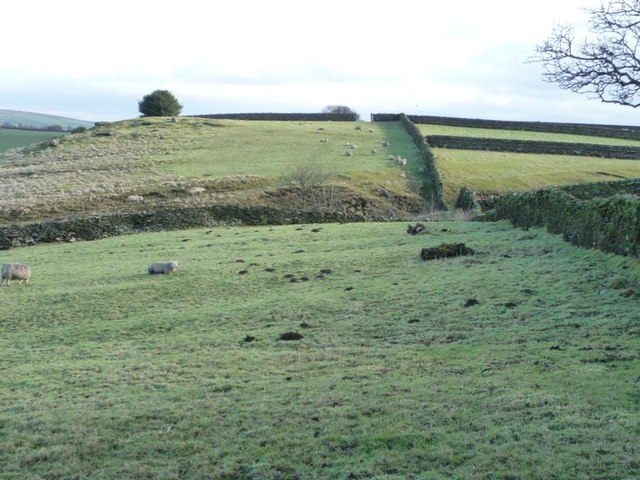 Deep nameless valley, Steeton Moor
