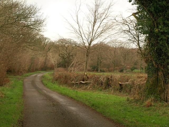 Lane near Scobchester