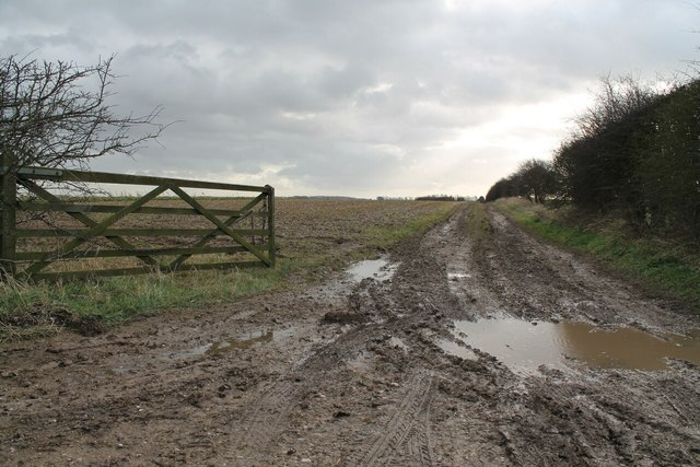Muddy Track, near Withcall