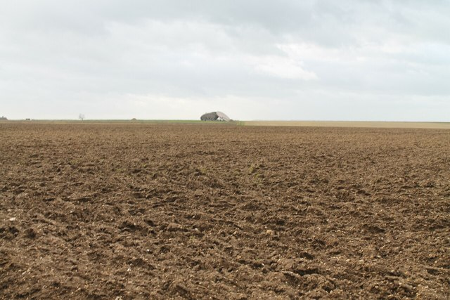 Field off Bluestone Heath Road