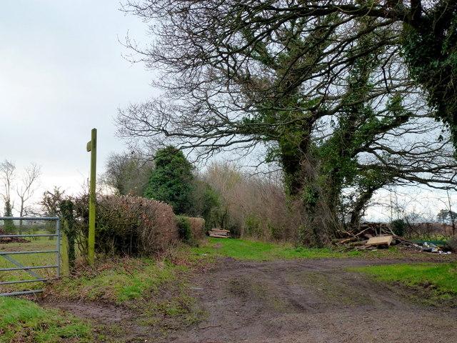 Perthi-bach Lane