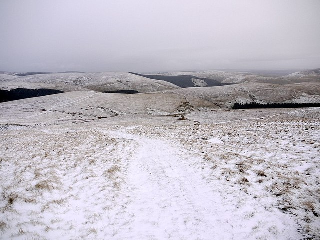 Bridleway south of Russell's Cairn, Windy Gyle