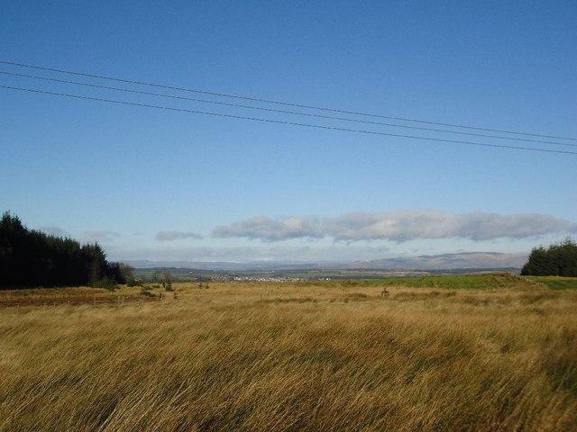 Castlecary Muir [6]