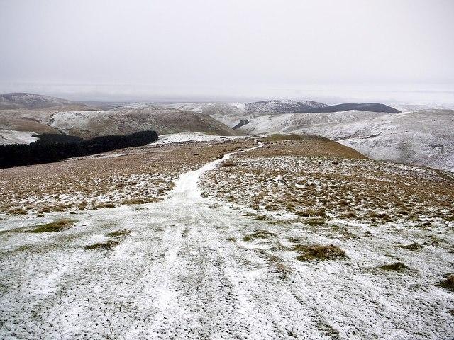 Ridge between Wardlaw Burn & Trows Burn