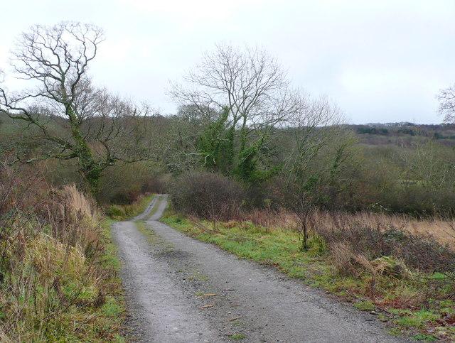 Track to Copse Barn