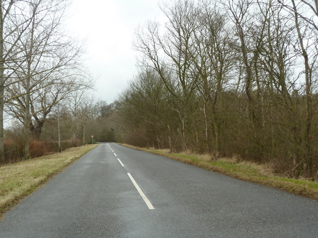 Tempsford Road southeast of Birch Wood