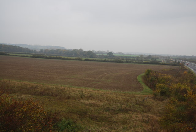 Farmland by the A299