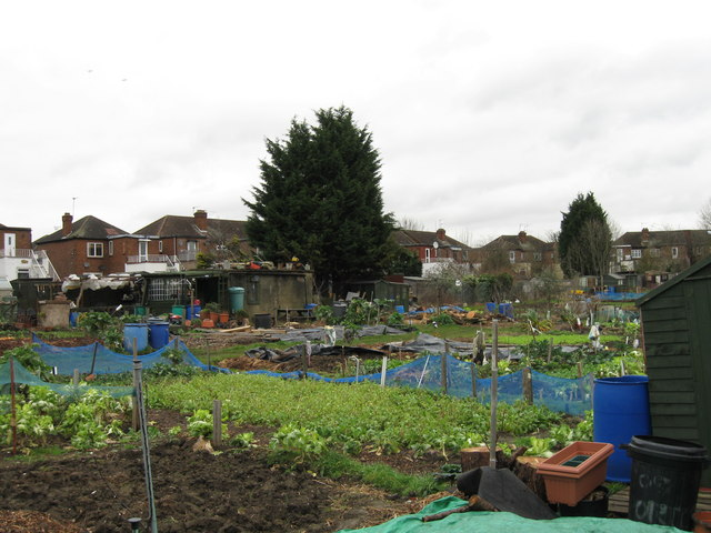Stanley Avenue allotments, Greenford