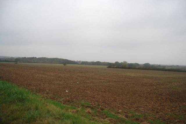 Farmland, West End