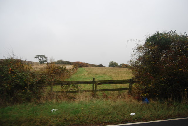 Farmland and fences