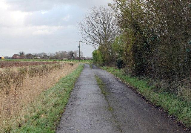 Furlongs Lane, near Mill Farm