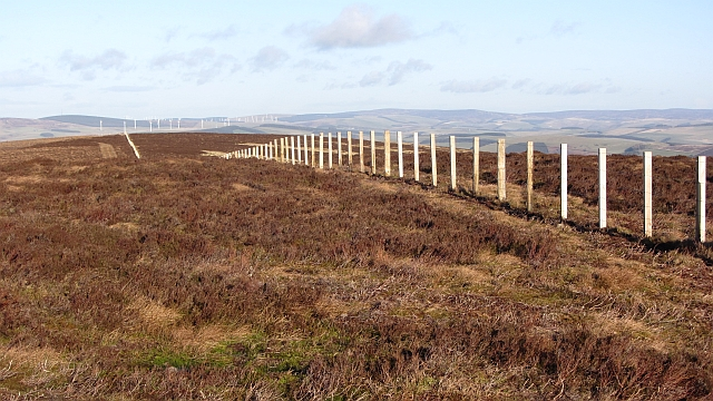 Fence on Dunlee Hill