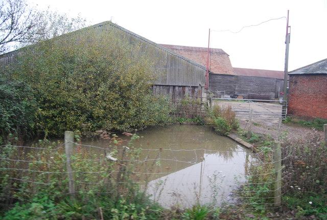 Pond, Buckwell Farm