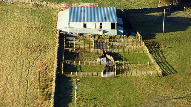 Sheep pens by The Lodge