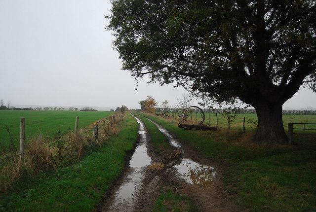Muddy track, Buckwell Farm