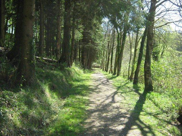 A quiet path at Kirroughtree