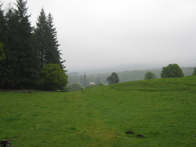 Looking towards Bardrochwood on a misty day