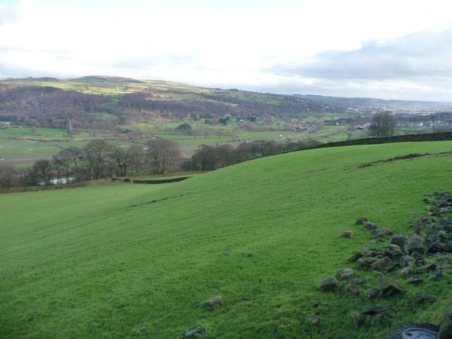 Pasture on the south side of the Aire Valley