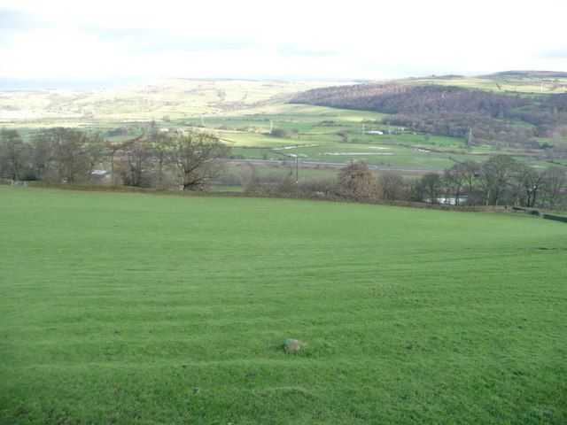 Ridged hillside pasture