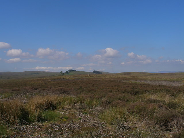 Approaching the trig point on Currack Rigg