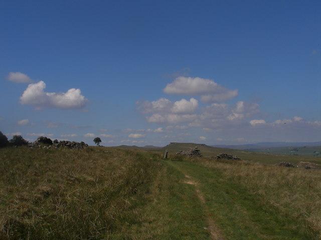 Loup's Hill
