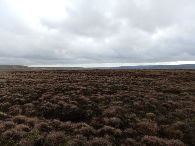 Cleasby Hill top