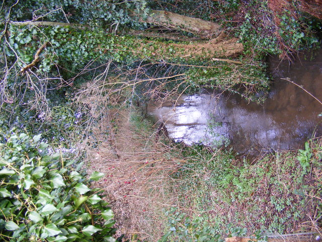 Stream after passing under Bealings Road
