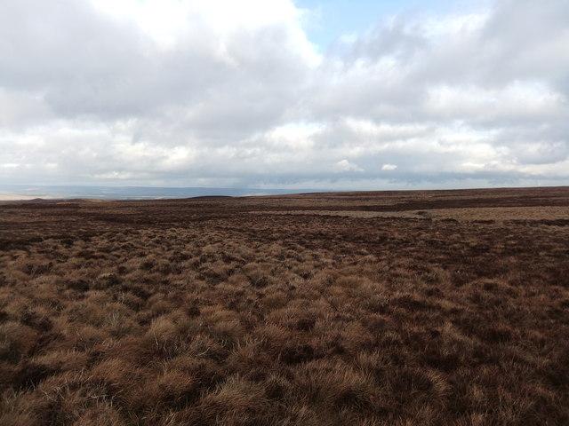 Moorland, Seavy Hill