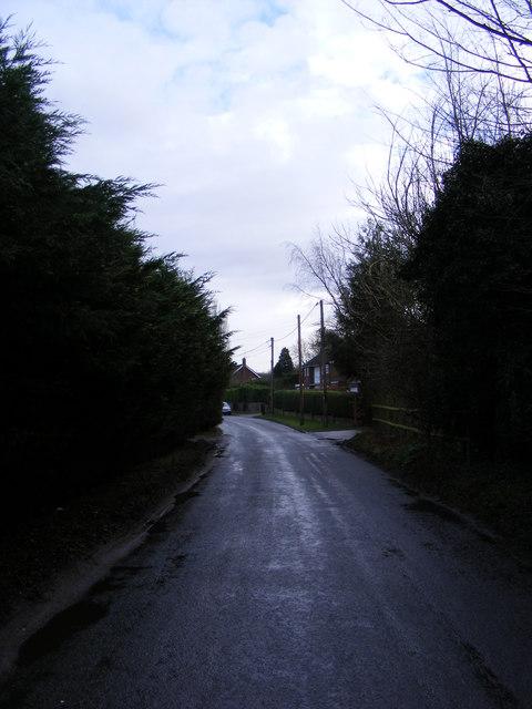 Bealings Road