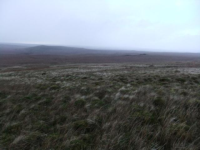 Across West Moor Bottom