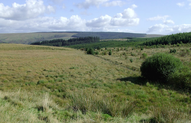 Moorland and felled forestry south-east of Soar-y-Mynydd