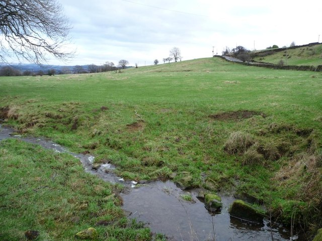 A new-born stream alongside the bridleway