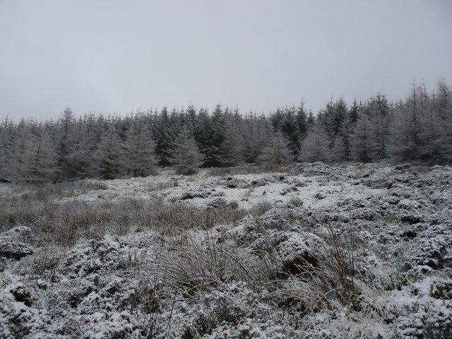 Dupin Hill