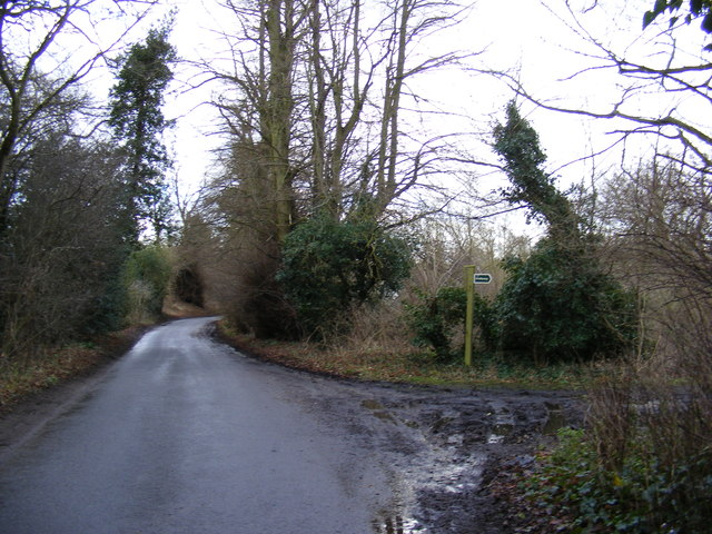 New Road and the bridleway to the A1152 Woods Lane