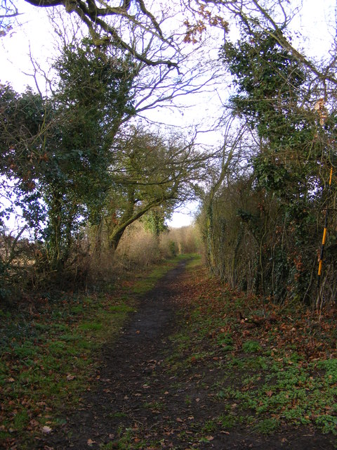 Bridleway to the A12