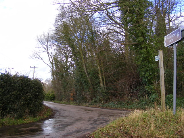 Lane to Foxburrow Farm